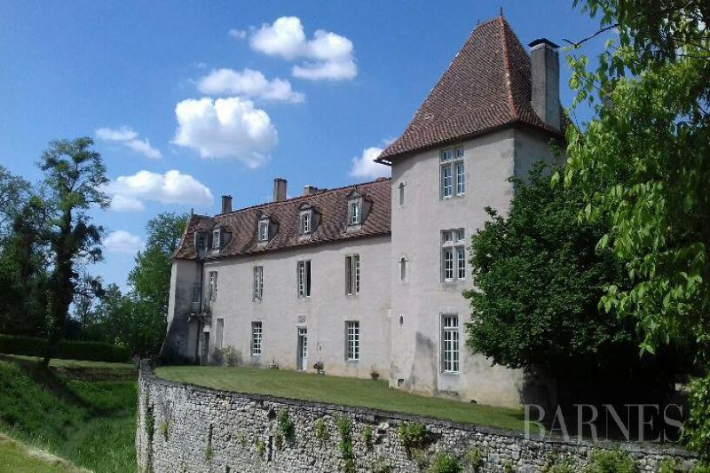 Castle XVII, Historical Monument, on a private  hunting of 90 hectares, South of Angoulème