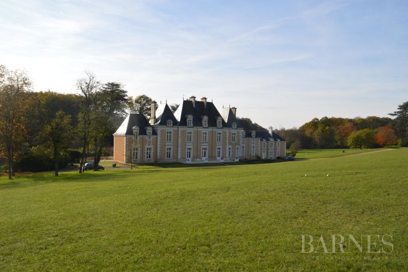 Luxurious 19th century chateau with 235 hectares
